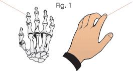 punto de acupuntura para el test